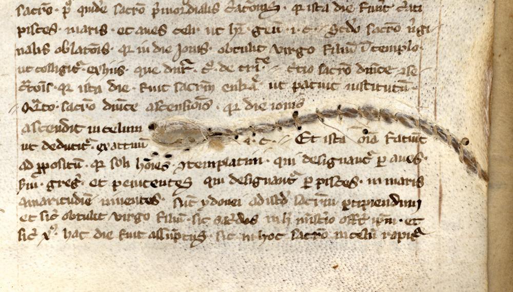 Handschrift Asketische Schriften Hs. 586/1860 4°, Stadtbibliothek Trier